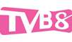 TVB Asian Action Channe 功夫台